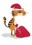 Katze mit Geschenk Stockfotografie