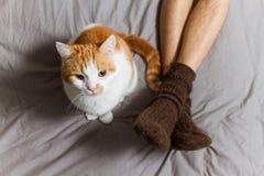 Katze mit Inhaber auf Bett Lizenzfreies Stockbild