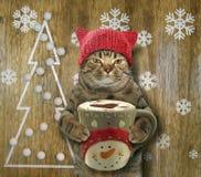 Katze mit Kaffee und Weihnachten lizenzfreie stockfotografie