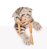 Katze mit Würsten im Mund, der von hinten leeres Brett späht lokalisiertes ob Weiß Lizenzfreies Stockbild