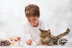 Katze mit Weihnachtsdekorationen Stockfotografie
