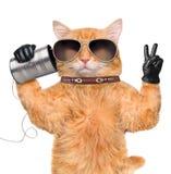 Katze am Telefon mit einer Dose Stockfoto