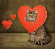 Katze und defektes Herz Lizenzfreie Stockfotos