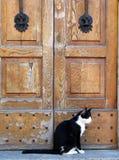Katze und die alten Türen Lizenzfreie Stockbilder