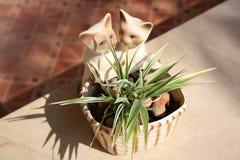 Katze und Grünlilien Lizenzfreies Stockfoto