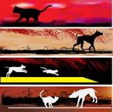 Katze-und Hundeweb-Fahnen-Schablonen Stockbilder