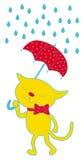 Katze und Regenschirm Stockfoto