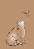 Katze und Schmetterling lizenzfreie abbildung