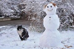 Katze und Schneemann Lizenzfreie Stockfotografie