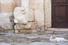 Katze und Skulptur Lizenzfreie Stockbilder