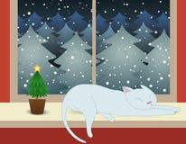 Katze und Tannenbäume in der Weihnachtsnacht Lizenzfreie Stockbilder