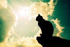 Katze und tiefer Himmel Stockfotografie