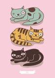 Katze und zwei Kätzchen Lizenzfreie Stockbilder