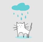 Katze unter dem Regen Lizenzfreies Stockfoto