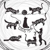 Katze zitiert die Kalligraphiebeschriftung, die auf Schattenbild der schwarzen Katzen eingestellt wird Stockfotos