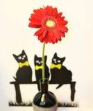 Katzen auf der Wand Stockbild