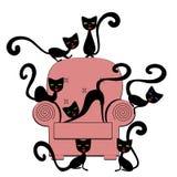 Katzen auf Trainer lizenzfreie stockbilder