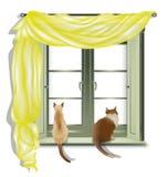 Katzen, die aus Fenster 2 heraus schauen lizenzfreie abbildung