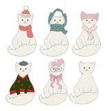 Katzen, die Hüte tragen Stockfotos