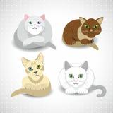 Katzen eingestellt Lizenzfreies Stockfoto