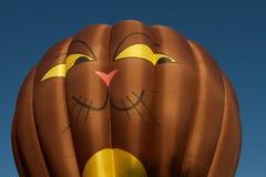 Katzen-Heißluft-Ballon Lizenzfreie Stockfotos