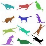 Katzen \ 'Schattenbilder Stockfotos