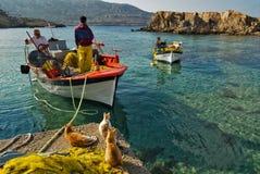 Katzen und fshermen auf dem Pier von Lefkos, Karpathos-Insel Stockbild