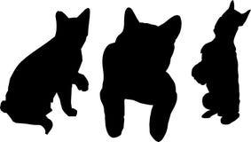 Katzen und Hund lizenzfreie abbildung