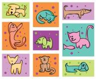 Katzen und Hunde. Lizenzfreie Stockfotografie