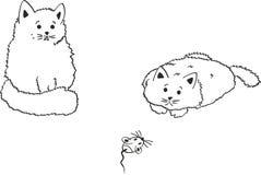 Zwei Katzen Stock Abbildung