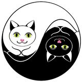 Katzen yin Yan Lizenzfreies Stockbild