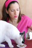 Katzenahrung lizenzfreie stockfotos