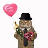 Katzendandy mit Champagner und Ballon Stockbild