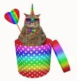 Katzeneinhorn in einer Geschenkbox lizenzfreie abbildung