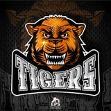 Katzengesicht von der Front mit den blanken Zähnen Logo für irgendwelche Sportteamtiger stock abbildung