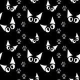 Katzenmuster Stockfotos