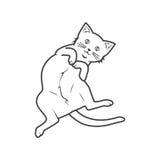 Katzenrollenentwurf Lizenzfreies Stockfoto