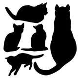 Katzensammlung - Schattenbild stock abbildung