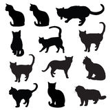 Katzenschattenbild Stockfoto