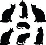 Katzenschattenbild in sitzender Haltung lokalisiert auf weißem Hintergrund Stockfotografie