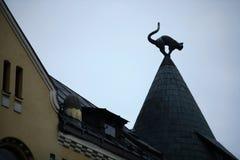 Katzenskulptur auf Dach Stockfotografie