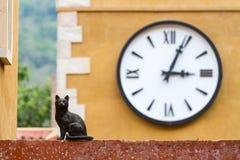 Katzenstatue und -uhr lizenzfreie stockbilder