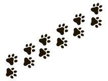 Katzentatzenspur Abdruckwolf-Katzenhund, Welpenhinternaturdruck-Vektormuster stock abbildung