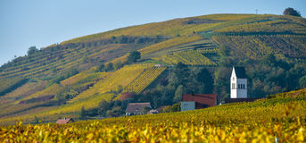Katzenthal in the vineyard of Alsace Royalty Free Stock Images