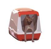 Katzenzucht Sphynx kommt aus die Haustoilette heraus ENV 8 Lizenzfreies Stockbild
