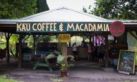 Kau Coffee & capanna di Macadmia fotografia stock