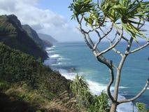 Kauai Royalty-vrije Stock Fotografie