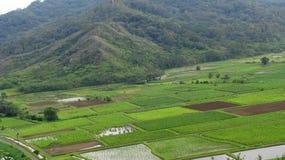 Kauai Imagen de archivo