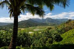 Kauai berg på den tropiska Hawaii ön av Kauai Royaltyfri Foto