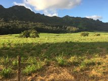 Kauai farmland with mountains in background stock images
